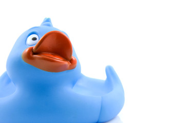 Big blue rubber duck on white