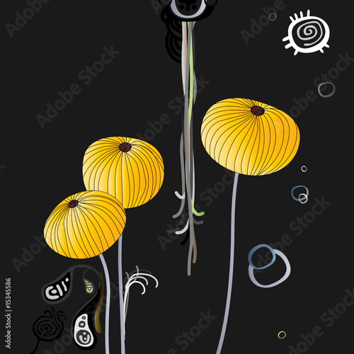 gold poppy on a dark background