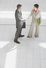 Aerial view of businessman and businesswoman shaking hands