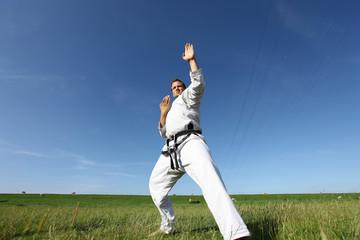 Taekwon-do fight