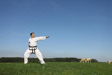 Taekwondo - Kämpfer