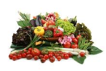 Bogactwo warzyw na białym tle