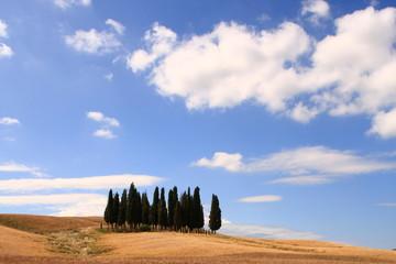 Wolkenhimmel, Zypressen, Toskana, Italien