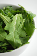Bol de feuilles de Roquette - Rocket leaves bowl