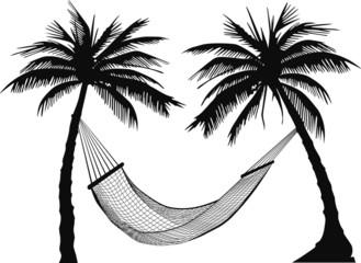 hängematte palmen
