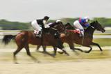 Slow shutter, racing jockeys and horses poster