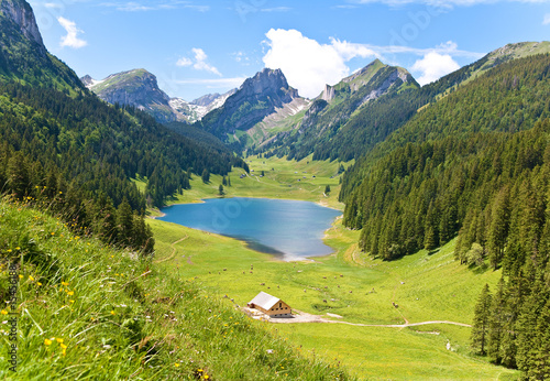 Leinwandbilder,panorama,alpweide,natur,berg