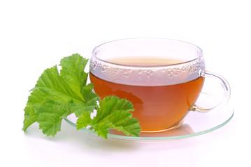 Tee Malve - tea malva 02