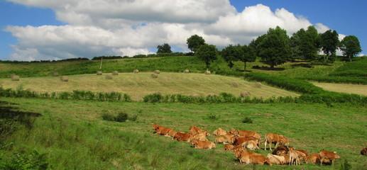 Vassivière en Limousin