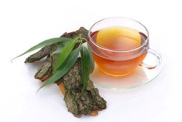 Tee Weidenrinde - tea willow 03