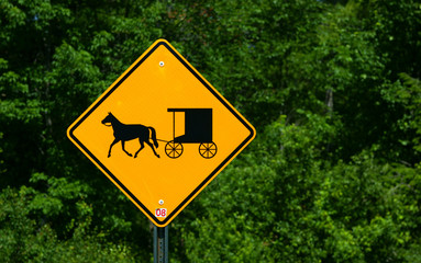 Rural horse and buggy sign