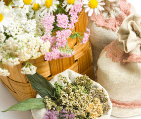 herbal medicine, dry  and fresh herbal in basket and sacks