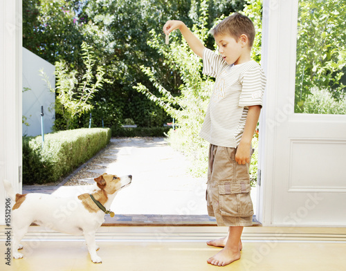 A young boy playing with his small dog