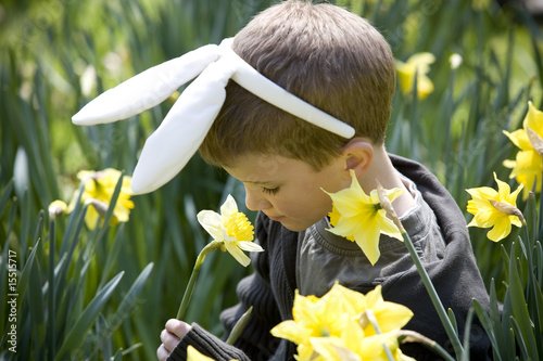 Young Boy Smelling Daffodil Wearing Bunny Ears