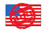 American swine flu flag poster