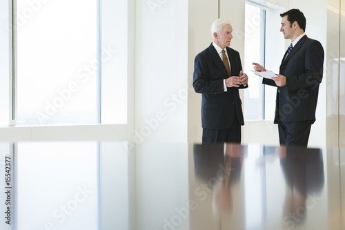 View of businesspeople discussing in an office.