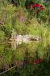 Leinwanddruck Bild - Sommer am Gartenteich