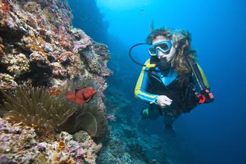 Taucher mit Anemonenfischen