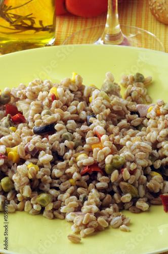Insalata di farro primi piatti freddi di comugnero for Primi piatti particolari