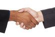 businesspeople - closeup handshake
