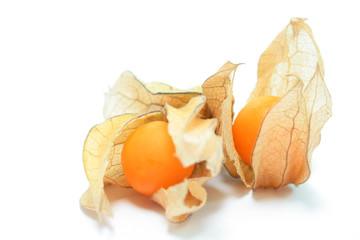 Two physalis, isolated on white with shadows