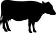 milch cow, vector illustration black and white