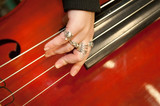 Musical string instrument poster