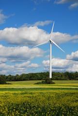 wind turbine in field