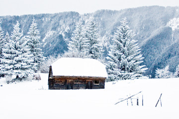 Old stable in winter