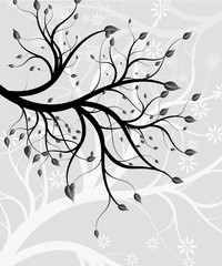 a graceful branch of a tree (silver flowers)
