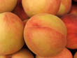 Pesche (Prunus Persica)