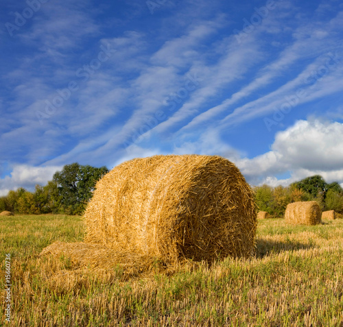 haystacks on the filed in autumn day