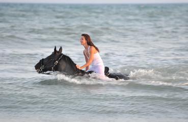 natation equine
