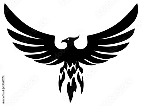 Phoenix bird wings (vector) - 15666376