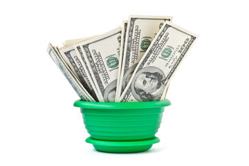 Money grows in a flowerpot