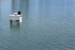 A desk alone in the water