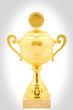 cold cup trophy