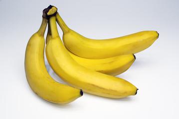 Banane (genere: Musa)