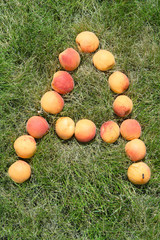 letter A made with apricots