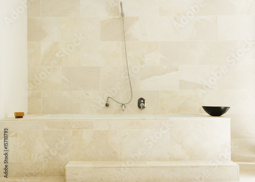 Modern bathtub with shower