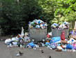 household garbage heap make pollution of flora, Earth planet - 15714191