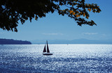 Sailing on Pacific Ocean poster
