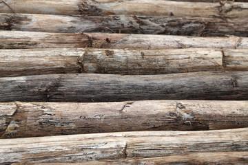 rondins de hampes sèches d'agave