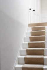 Stairs with beige runner