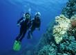 Taucher im farbenprächtigen Korallenriff