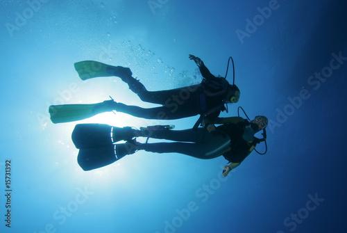 Leinwandbild Motiv Taucher im freien Wasser|Divers in the water|