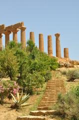 Temple Romain - Agrigente