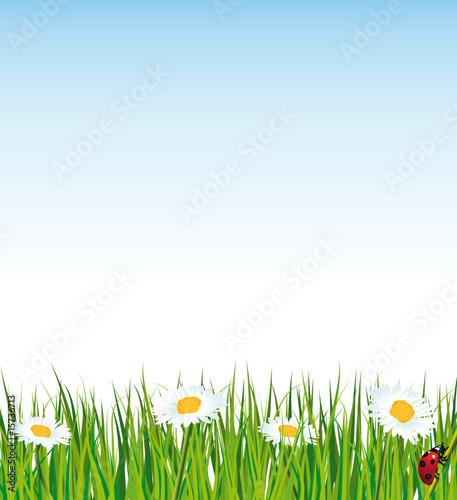 Natural Background Wallpaper