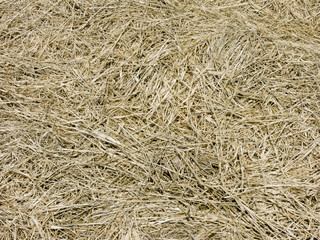 straw close-up background