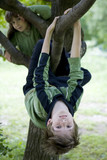 hang from tree in backyard poster